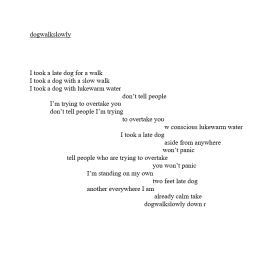 dogwalkslowly, awarded second prize in the Streetcake Experimental Writing Prize for poetry age 22-26 catagory